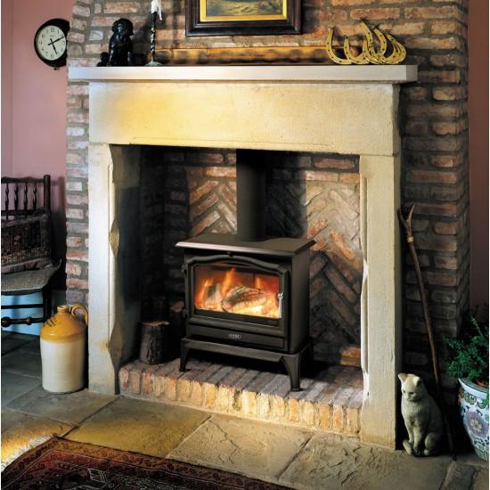 Esse 100 SE Multifuel / Woodburning Stove